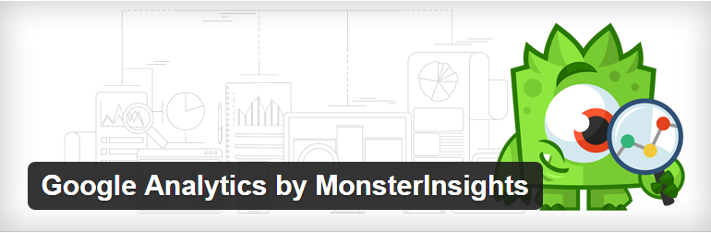 Google Analytics by MonsterInsights4